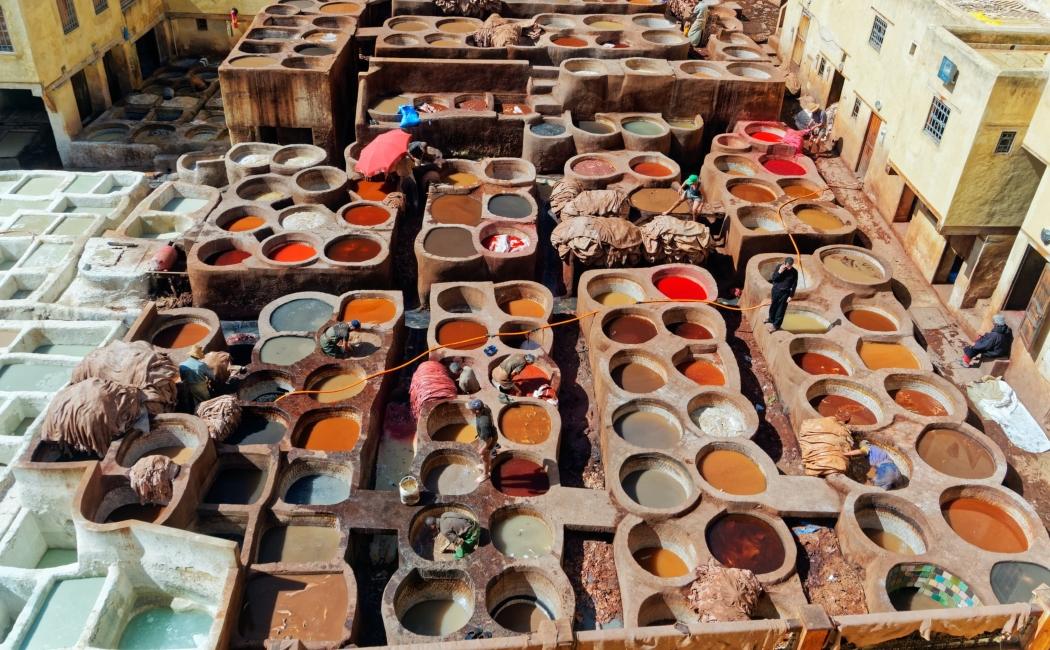 curtiduría chouwara tannery. Viajar a Marruecos